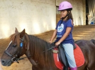 min_result colonies de vacances poney club 1