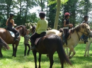 Colonie de vacances : Grand Galop à Coulon