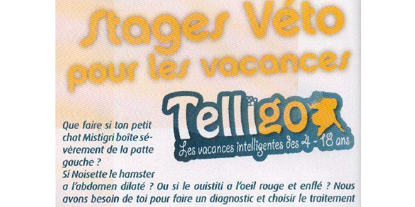 article animalinfos stages telligo