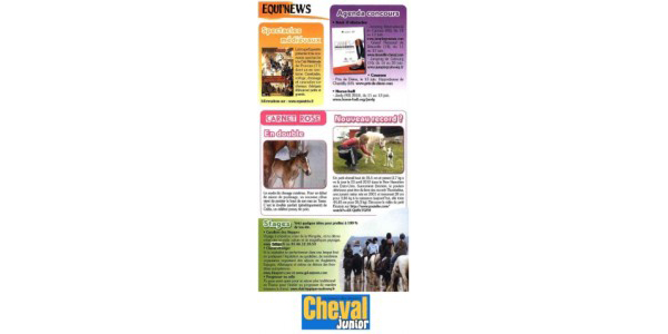 article cheval junior colonies equitations